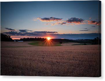 Canvas Print featuring the photograph The Fields At Sunset by Mark Dodd