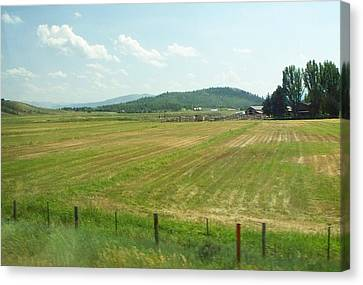 The Fields Of Summer Canvas Print