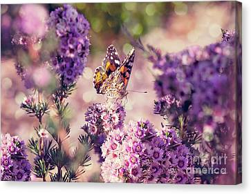 Canvas Print featuring the photograph The First Day Of Summer by Linda Lees