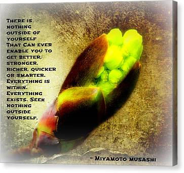The First Stirrings Of Spring With Musashi Quote II Canvas Print by Aurelio Zucco