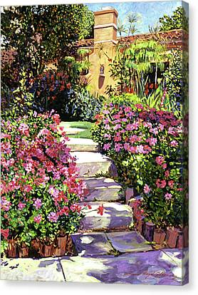 The Five Steps Canvas Print by David Lloyd Glover