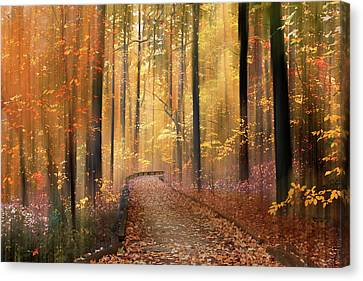 Flickering Light Canvas Print - The Flickering Forest by Jessica Jenney