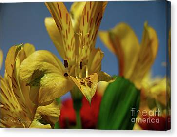 The Flower Canvas Print