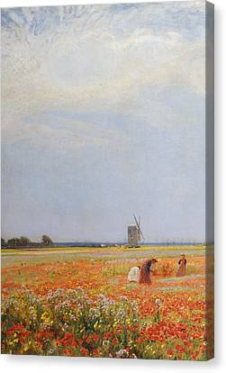 The Flower Pickers Canvas Print by David Murray