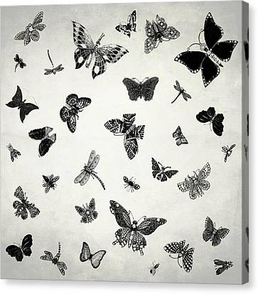 The Flutter And Fly Canvas Print by Mark Rogan