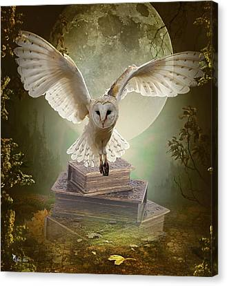 The Flying Wise Canvas Print