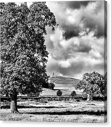 Old John Bradgate Park Canvas Print by John Edwards