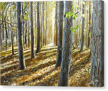 The Forest And The Trees Canvas Print