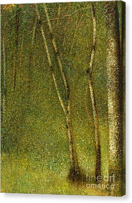 Light And Dark Canvas Print - The Forest At Pontaubert, 1881 by Georges Pierre Seurat