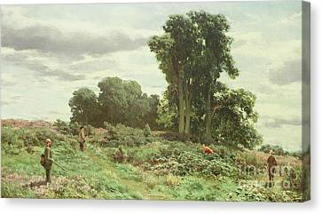 The Forest Of Meiklour, Perthshire Canvas Print