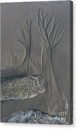The Forest On The Beach Canvas Print by Masako Metz