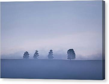 Inversion Canvas Print - The Four by Chris Dale