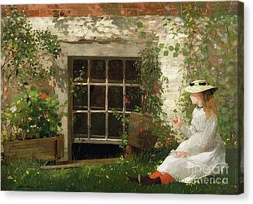 The Four Leaf Clover Canvas Print by Winslow Homer