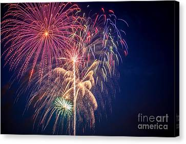 Pyrotechnic Canvas Print - The Fourth by Lynn Sprowl