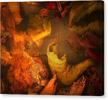 The Frail And Singular Fortress Of The Dissolving Self Canvas Print by Peter Ciccariello