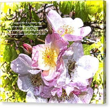 Frailty Canvas Print - The Frailty Of Summer Roses And Of Love by Brenda Kean