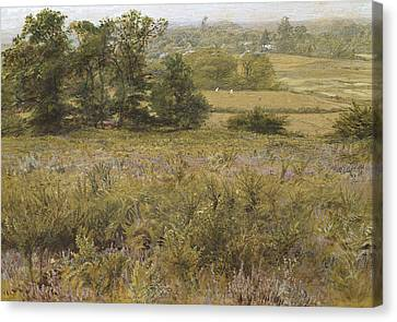 The Furze Field Canvas Print