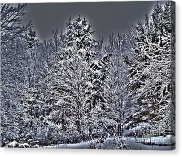 Winter Storm Canvas Print - The Gathering by Robert Orinski