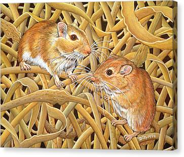 Gerbil Canvas Print - The Gerbils by Ditz