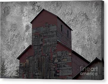 The Gift Of Decay Canvas Print