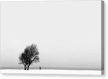 The Giving Tree Canvas Print by Marcus Karlsson Sall
