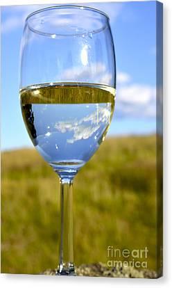 Virginia Wine Canvas Print - The Glass Is Half Full by Thomas R Fletcher