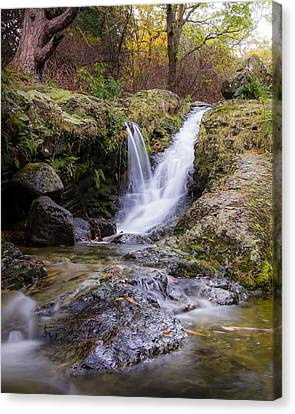 The Glen River Falls Canvas Print