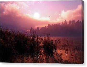 The Gloaming Canvas Print by Melissa Krauss