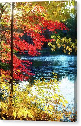 The Glory Of A New England Autumn Canvas Print