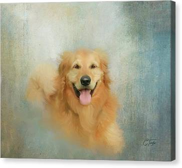 Canvas Print featuring the mixed media The Golden by Colleen Taylor