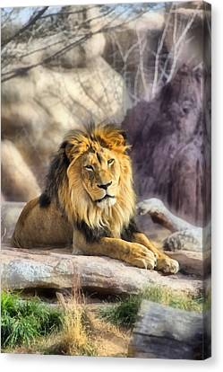 Animal Canvas Print - The Golden King 3 by Angelina Vick