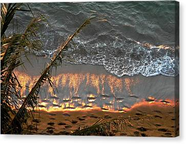 The Golden Moment IIi Canvas Print