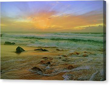 Canvas Print featuring the photograph The Golden Moments On Molokai by Tara Turner