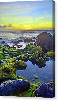 Canvas Print featuring the photograph The Golden Skies Of Molokai by Tara Turner