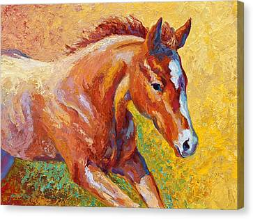 Rodeo Canvas Print - The Good Life by Marion Rose