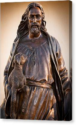 Canvas Print featuring the photograph The Good Shepard by Monte Stevens