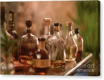 Canvas Print - The Good Stuff by Lois Bryan