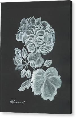 The Gossamer Geranium Canvas Print by Carol Wisniewski