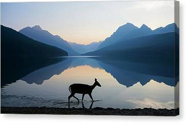 Silhouettes Canvas Print - The Grace Of Wild Things by Dustin  LeFevre