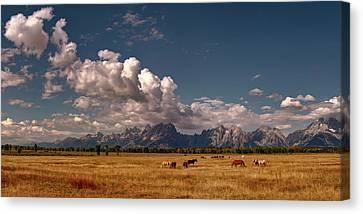 Impasto Horses Canvas Print - The Grand Tetons by Lena  Owens OLena Art