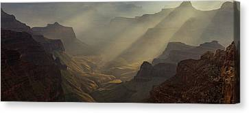 The Grandest Of Them All Canvas Print by Bill Cantey