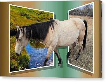 The Grass Is Always Greener On The Other Side Canvas Print by Shane Bechler