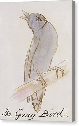 Drawing Of Lovers Canvas Print - The Gray Bird by Edward Lear