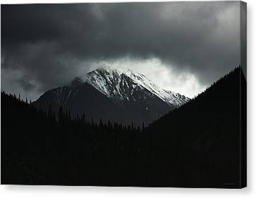The Grays Of Grays Canvas Print by Brian Gustafson