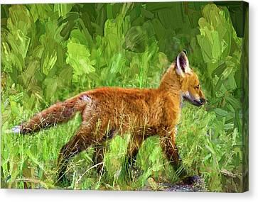 Fox Kit Canvas Print - The Great Adventure 2 - Impasto by Steve Harrington