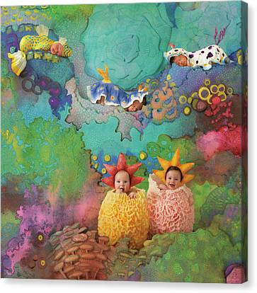 Under The Sea Canvas Print - The Great Barrier Reef by Anne Geddes
