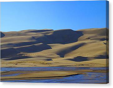 The Great Sand Dunes Up Close Canvas Print