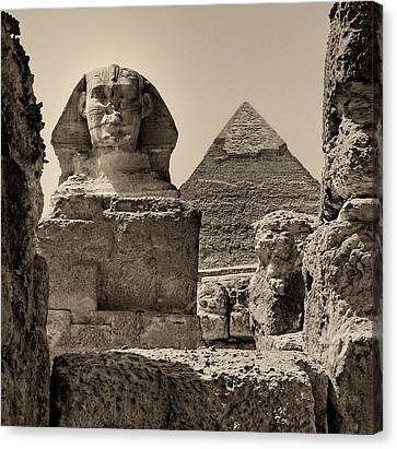 The Great Sphinx And Pyramid Of Khafre Canvas Print by Nigel Fletcher-Jones