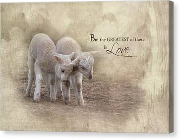Canvas Print featuring the photograph The Greatest Is Love by Robin-Lee Vieira