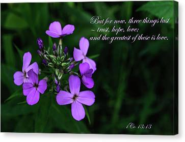 Canvas Print featuring the photograph The Greatest Is Love by Tikvah's Hope
